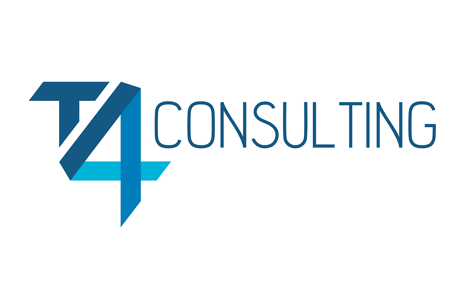 T4 Consulting website
